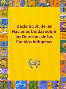 Declaracion ONU